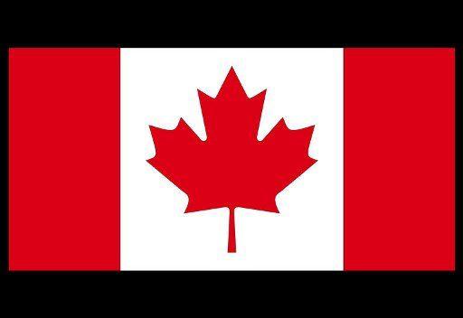 كندا تشدد العقوبات على سورية وتغلق سفارتها في دمشق