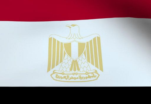 القضاء الاداري المصري يصدر قرارا بوقف اجراء الانتخابات الرئاسية المقررة هذا الشهر