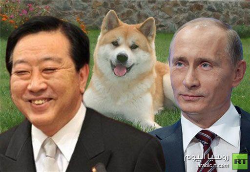 اليابان تهدي جروا  للرئيس الروسي بوتين
