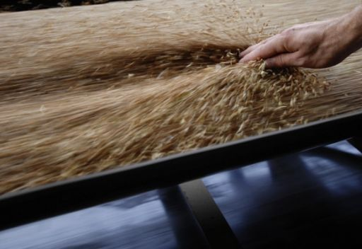 روسيا تستبعد أن يؤثر تراجع محصول الحبوب على الاستهلاك المحلي
