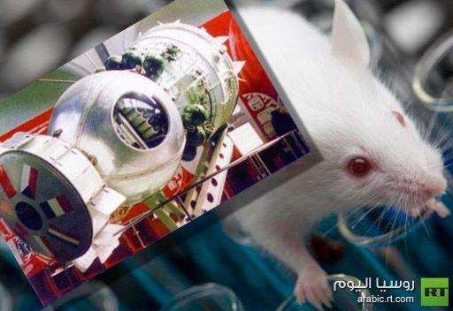 تأجيل إطلاق القمر الصناعي البيولوجي الروسي