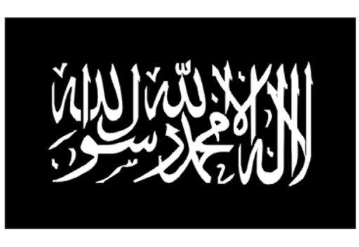 شقيق الظواهري يطرح مبادرة للهدنة بين تنظيم القاعدة والغرب