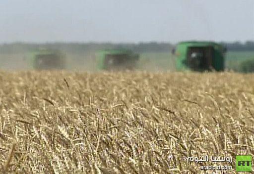 ارتفاع أسعار الحبوب قد يدفع روسيا إلى فرض قيود على تصديرها