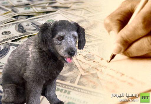 3 كلاب تحظى بالحصة الأكبر  في وصية أمريكية وابنها يسعى للحصول على الثروة