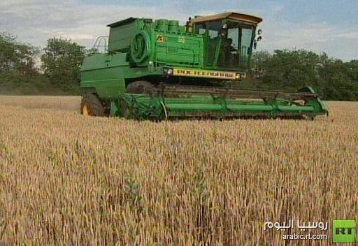 توقعات بارتفاع إنتاج الحبوب في روسيا إلى 102 مليون طن