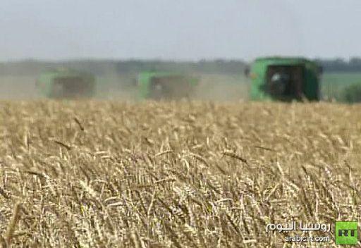 مجلس الحبوب العالمي يخفض من توقعاته للمحصول الروسي