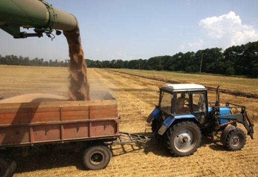 صادرات روسيا من الحبوب تبلغ 10.3 ملايين طن