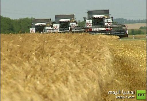 انخفاض أسعار القمح العالمية 0.6%