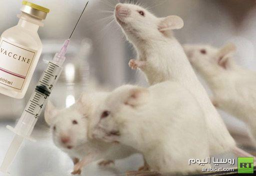 علماء يطورون مرهمأً لعلاج الجلطة القلبية لدى الحيوانات ويأملون بنجاعته للبشر
