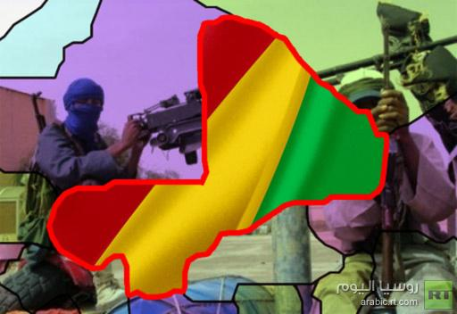 بلدان غرب افريقيا تتفق على تعزيز حدودها مع مالي