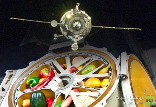 مركبة الفضاء بروغريس تلتحم بنجاح بالمحطة الدولية