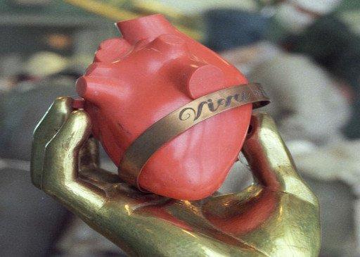بعض المعلومات المفيدة عن قلب الانسان