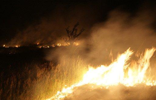 مصرع 19 رجل اطفاء بحريق في أريزونا الأمريكية