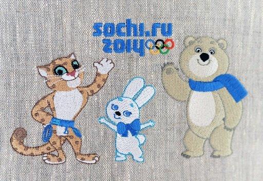 اللجنة الأولمبية الأمريكية ترفض الدعوة لمقاطعة أولمبياد سوتشي 2014