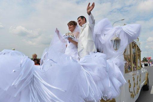 300 شخص يحملون أطول طرحة زفاف يزيد طولها عن 3.5 كلم