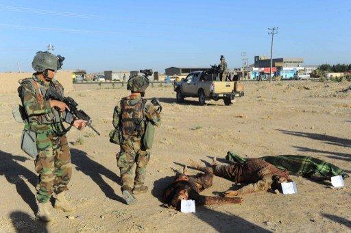 مقتل 12 واعتقال 33 مسلحا في عمليات أمنية في أفغانستان