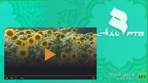 الإعلان عن إطلاق قناة تلفزيونية إسلامية في روسيا