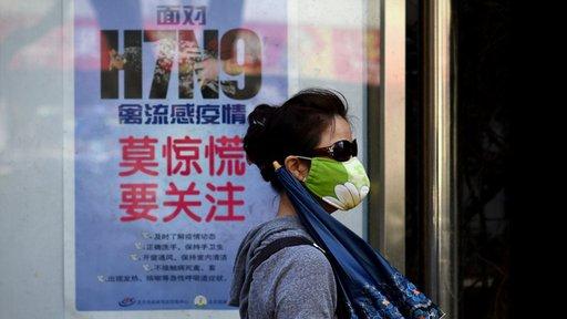 فيروس انفلونزا الطيور الجديد يمكن ان يتحول لوباء