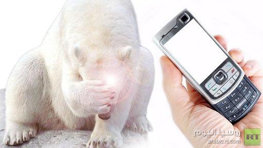 كندي يستخدم هاتفه النقال ويرعب به دبا