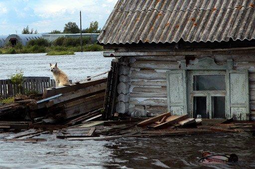 وزارة الطوارئ الروسية: غرق 95 مركزا سكنيا في الشرق الأقصى الروسي