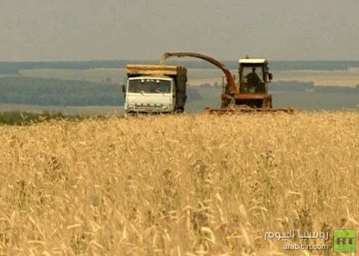 محصول الحبوب في روسيا حتى 20 سبتمبر الحالي 72.7 مليون طن