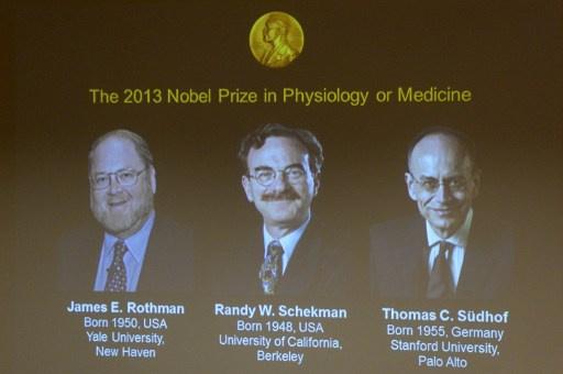 منح جائزة نوبل في الطب للأمريكيين جيمس روثمان ورندي شيكمان والألماني توماس سودهوف