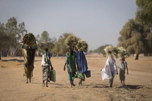 بلدان جنوب القارة الافريقية تطالب تمثيلا اوسع في قيادة صندوق النقد الدولي