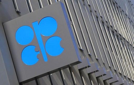 أوبك ستطور 120 مشروعا لإنتاج النفط حتى عام 2017