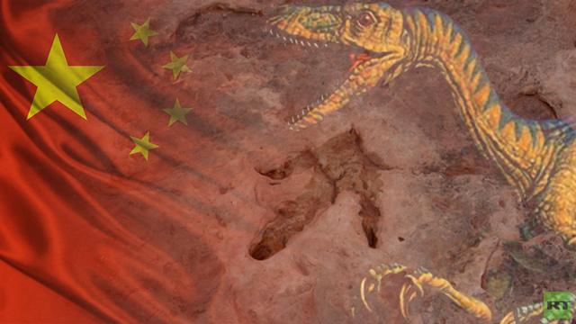 العثور في الصين على آثار لديناصور عاش قبل 70 مليون عام