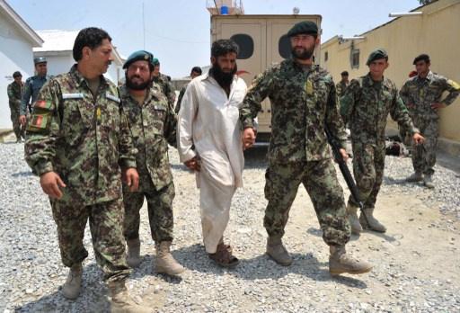حركة طالبان الأفغانية خسرت نحو 12 ألفا من مقاتليها في 2013