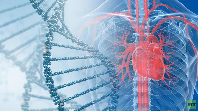 علماء يكتشفون مورثة مسؤولة عن أمراض القلب والأوعية الدموية