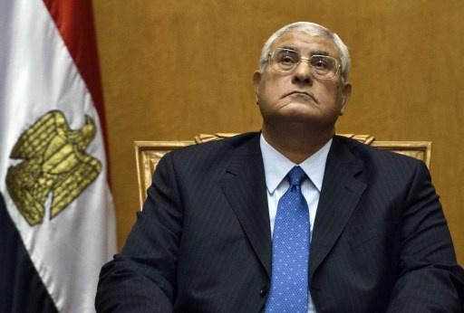 الرئيس المصري المؤقت يتسلم مسودة الدستور تمهيدا للدعوة من أجل الاستفتاء عليه
