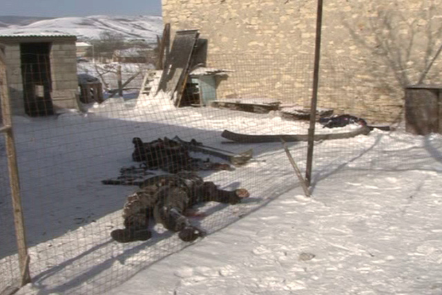 تصفية 5 مسلحين في عملية أمنية بجمهورية داغستان
