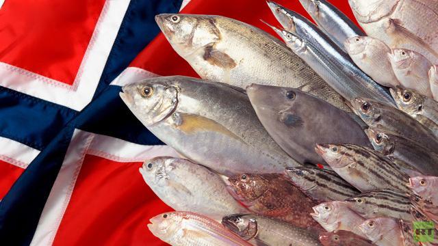روسيا تحظر جزئيا استيراد الأسماك من النرويج بحلول العام الجديد