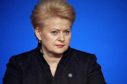 رئيسة ليتوانيا: حكومة يانوكوفيتش فقدت ثقة الاتحاد الأوروبي