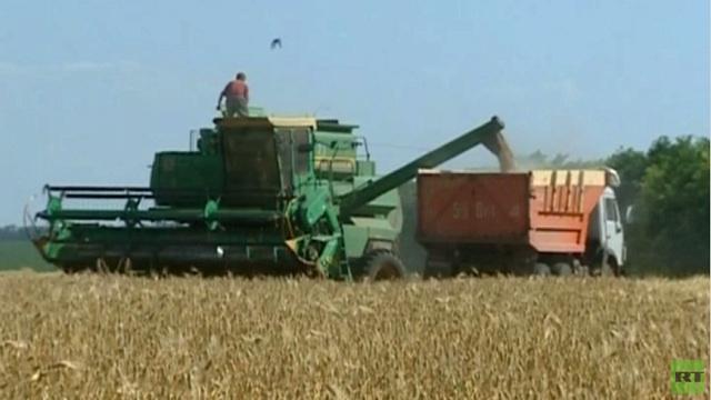 محصول الحبوب الروسي يتجاوز 97 مليون طن