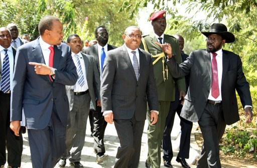 دول جوار جنوب السودان ترفض استخدام العنف للإطاحة بحكومة جوبا وتدعو لوقف النار