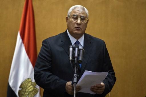 منصور يؤكد إنجاز الانتخابات البرلمانية والرئاسية في غضون 6 أشهر بعد إقرار الدستور