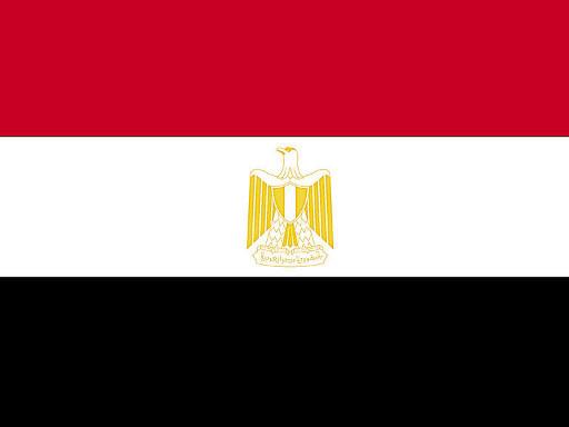 الخارجية المصرية: نتعامل مع تركيا بحزم ونقول لقطر للصبر حدود