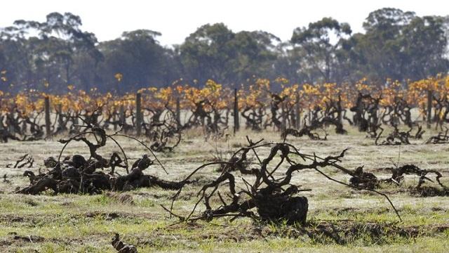 التغيرات المناخية والسكانية تزيد خطر الجفاف في نهاية القرن