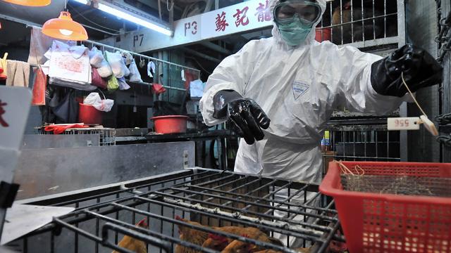تسجيل حالتي اصابة بإنفلونزا الطيور في جنوب الصين
