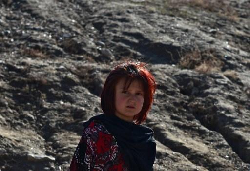 منظمة شنغهاي للتعاون معنية بجذب أفغانستان إلى نشاطاتها الإقليمية