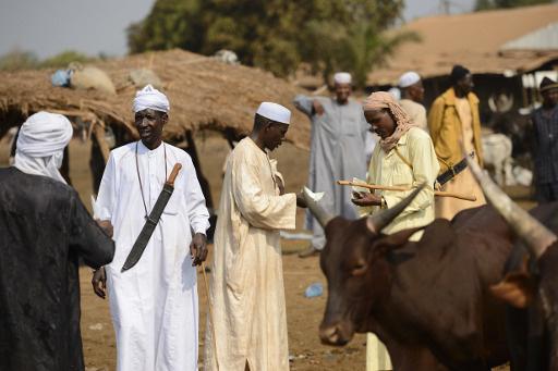 24 شخصا يتقدمون بترشيحاتهم لمنصب الرئيس المؤقت لافريقيا الوسطى.. والقوات الفرنسية تتأهب