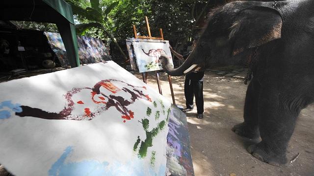 بالصور والفيديو: شاهد آخر لوحات الفيل الفنان بيتر