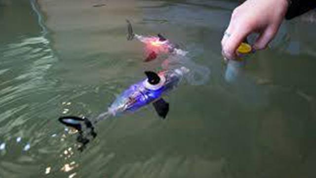 روسيا.. سمكة روبوت للأغراض العسكرية