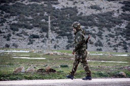 الجيش الجزائري يقضي على مسلحين بالقرب من الحدود مع مالي