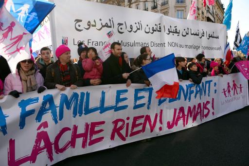 نصف مليون شخص يشاركون في الاحتجاجات ضد زواج مثلي الجنس في باريس (فيديو)