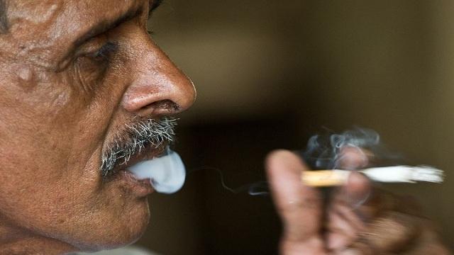 المصريون يستهلكون 80 مليار سيجارة سنويا