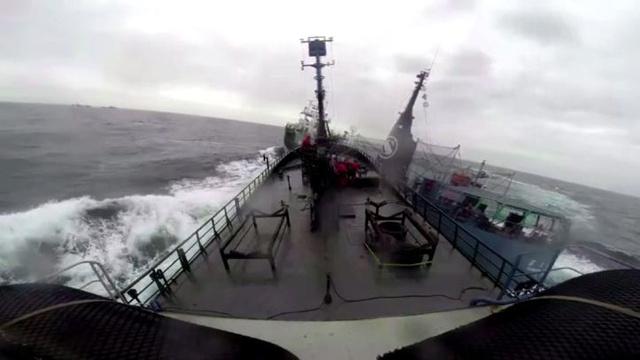 بالفيديو.. معركة بحرية لحماة الطبيعة مع سفينة يابانية لصيد الحيتان