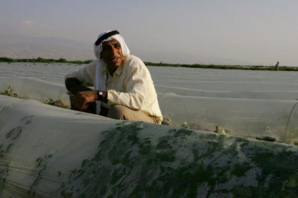 الأردن يعيد شحنة من الكاكا الإسرائيلية لمصدرها لعدم وجود كتابة بلد المنشأ عليها